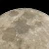 Veneros's avatar