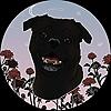 VentiBeans's avatar