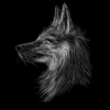 VentureNovus's avatar
