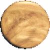 venus-plz's avatar