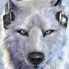 vertiser's avatar