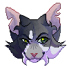 vibrates's avatar