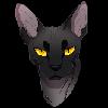 Viiis's avatar