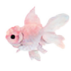 violetense's avatar