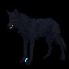 VISAGE-48's avatar