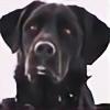 Vitadog's avatar