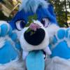VladBlueberry's avatar