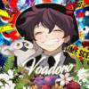 Voadoro's avatar