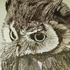 VoidParallax's avatar