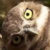 volixx's avatar