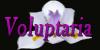 Voluptaria's avatar
