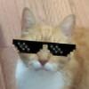 voregoisie's avatar