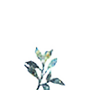 vqzk's avatar