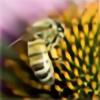 Vraxor22's avatar