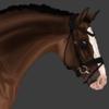 VSEquineArt's avatar