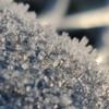 w1ldr0ver2334's avatar