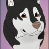 Waggintails-Kennels's avatar