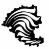 wahasai's avatar