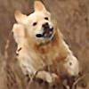 walking-with-gustav's avatar