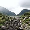 wannacookie's avatar