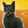 WarriorShadows's avatar