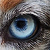 warriorsSpottedfur's avatar