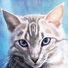 Warriorzforlife777's avatar