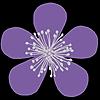 wayleri's avatar