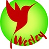 wdesign973's avatar