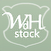 WDH-Stock's avatar