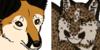 we-love-taxidermy's avatar