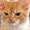 Weegaboo9461's avatar