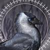 Weenyah's avatar