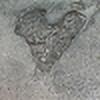 weirdoonna's avatar