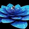 weishmarvo's avatar