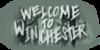 WelcomeToWinchester's avatar