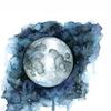 werelove's avatar