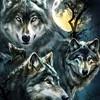 WerewolfGirl21's avatar