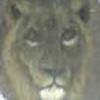 werewolfone's avatar