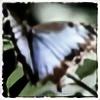 whitedove18's avatar