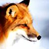 WhiteMarkFox's avatar