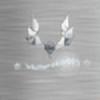 whiterobin667's avatar