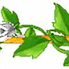 whiterose5plz's avatar