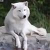 whitexlightning's avatar