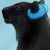 WikiTiki7's avatar