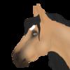 Wild-Catx's avatar