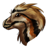 Wildfire410's avatar