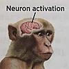wildfireCC34's avatar