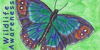 Wildlife--Awareness's avatar
