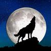 wildnorthernwolf's avatar
